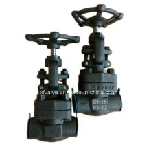 Forged Carbon Steel A105 Thread End NPT Globe Valve