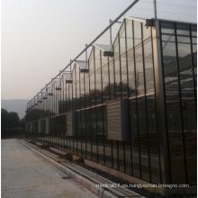 Invernadero de vidrio prefabricado para la agricultura