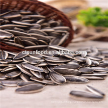 5009 sunflower seeds , agriculture seed companies