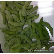 Nova colheita IQF Sweet Snap Pea / Açúcar Snap Pea