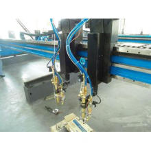 Customized CNC System Cutting Machine with Dual Drive