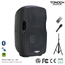 Factory Supply 10 Inches Plastic Powered Speaker with Good Quality