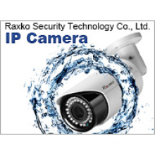 IP Network CCTV Security Video Waterproof IR Camera (RO-T9080Hz53V)