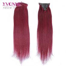 Mode Farbe Remy Menschenhaar Clip in Haarverlängerungen
