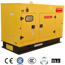 Экономичный дизельный генератор Динамо (BU30KS)