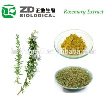 Natural Cosmetic Material Rosemary Extract Rosmarinic Acid In Herbal Extract for Whitening Mask