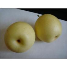 Grade d'une vente de poires de couronnes fraîches en Chine