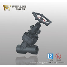 Male Screw End Angle Globe Valve