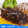 Healthy food Dried Sea Cucumber from South East Asia