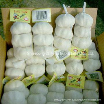 2015 nueva temporada ajo blanco fresco de Vegetabls