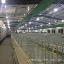 Hot galvanized automatic chicken cage for growing broilers