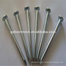 Hot sale hardened steel concrete nails/steel concrete nails china supplier