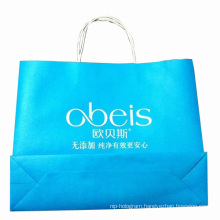 Color Printed Paper Shopping Carrier Bag