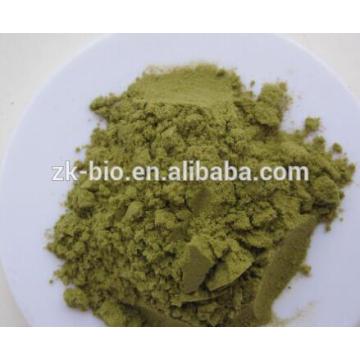 Polvo de jugo de col rizada orgánica de alta calidad