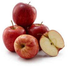 high quality fresh gala apple