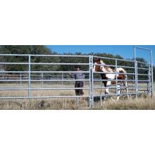 Eisenstange Pferdestall Made in China