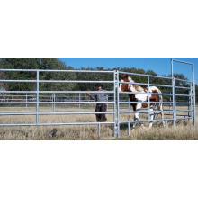 Iron Rod Horse Stable Made in China