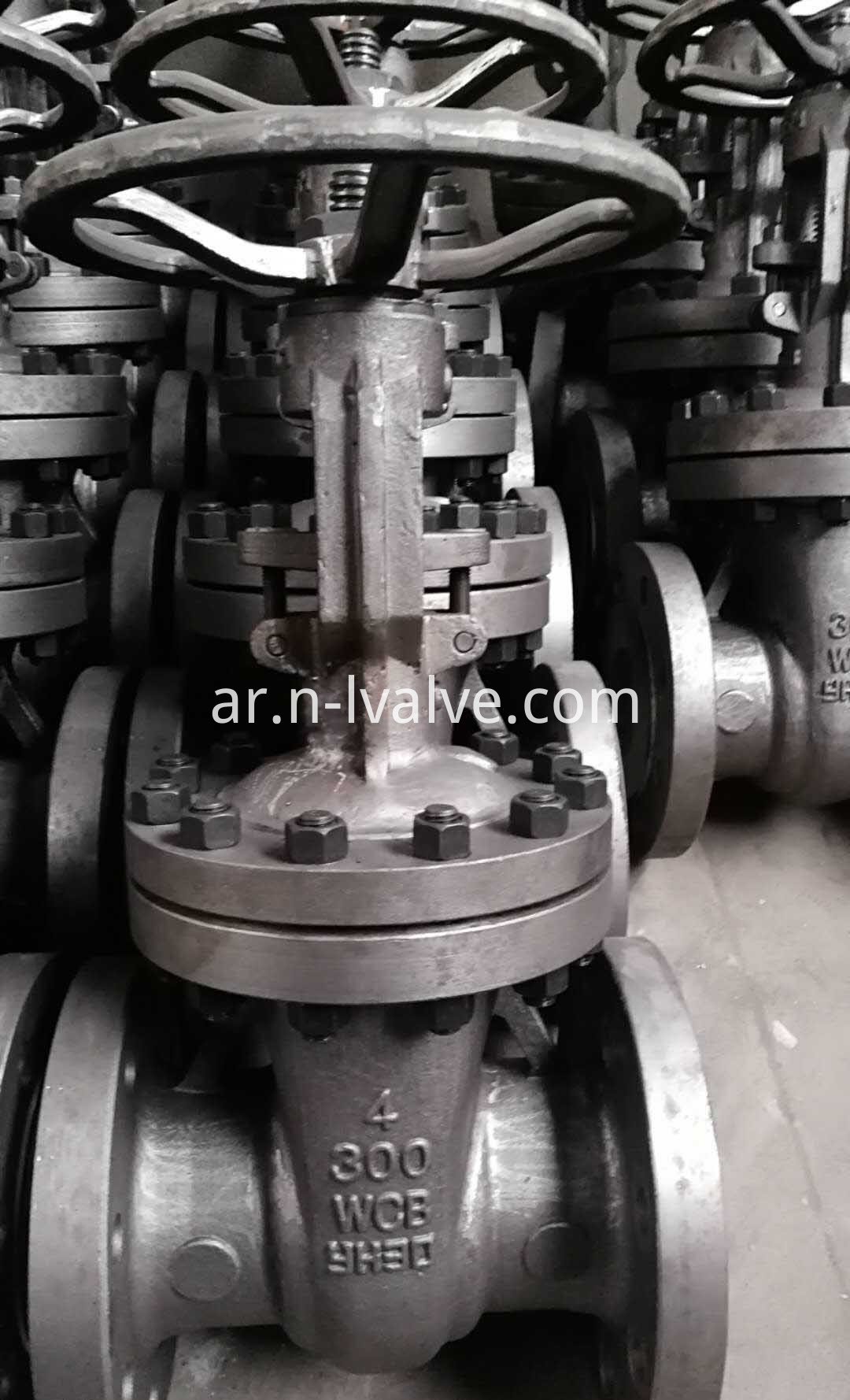 ANSI Bolt Bonnet Gate Valve