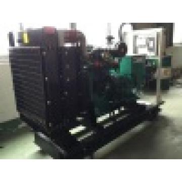 Générateurs de gaz naturel Cumkin de 30kw 30kw