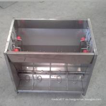 Alimentador de cerdo automático de acero inoxidable