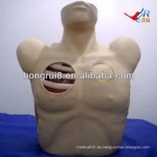 Maniquí de drenaje pleural de ISO, descompresión del neumotórax, modelo de toracocentesis