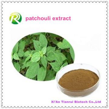 Fuente de la fábrica directamente Extracto de pachulí de Herba Pogostemonis PE