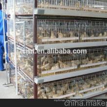 granja de pollos de calidad industrial suministra equipos de aves de corral para la venta