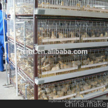 quality industrial chicken farm supplies poultry equipment for sale