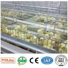 Целлюлозная клеть и инкубатор для птицефабрик