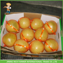 Prix des fruits de raisin chinois Pomelo frais Pomme de terre douce chinoise fraîche
