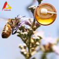 Pure Chaste Bee Honey para la dieta de la salud