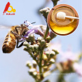 Miel pur d'abeille de Chaste pour le régime de santé
