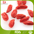 Top quality Chinese organic red goji berries/red wolfberry/red medlar/manufacturer sale /free samples