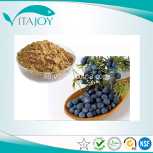 100% Natural Juniper Berry Utdrag Pulver