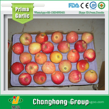 2015 Liaoning Red Jiguan Apple