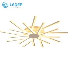 LEDER Interior Flush Ceiling Lighting