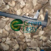 Nuevo Crop IQF Fresh Baby Oyster Mushroom