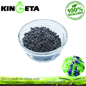Nature organic fertilizer wholesales agriculture
