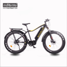 2018 36v350W Bafang Mid Drive electric bike with hidden battery,fat tire electric bicycle