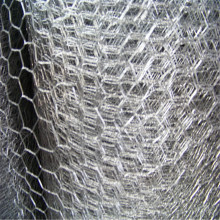 Hot sale hexagonal 1/2 inch Chicken coop wire mesh staket
