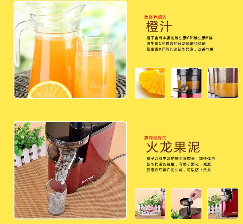 vegetable fruit juicer