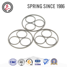 Custom Various Oil Seal Spring for Automotive Transmission