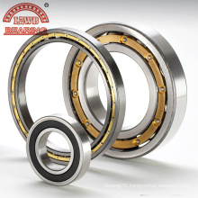 Most Competitive Brass Cage Contact Ball Bearing (7406C-7413C)