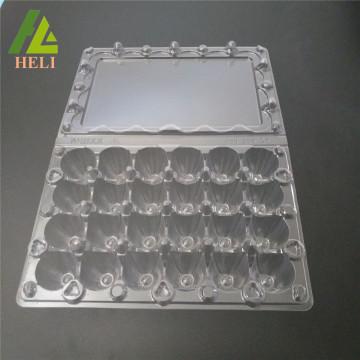 24 Cells Plastic Coturnix Eggs PVC Container