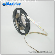 3014 Cct Variant and Dimmable LED Strip Lighting