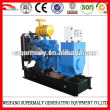 Генераторы Weifang Ricardo для дизельных двигателей мощностью 8-200 кВт с CE