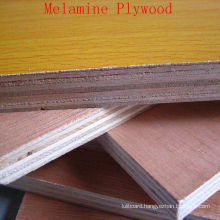 Decoration Plywood with Melamine Faced