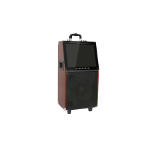 Active Wooden Trolley Party Portable Bluetooth speaker