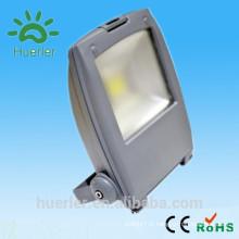 Shenzhen 85-265v 12v / 24v en plein air ip66 recouvert givré deco magnifique 30w 50w conduit projecteur