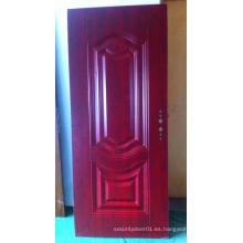 Puerta de panel americano con paneles interiores
